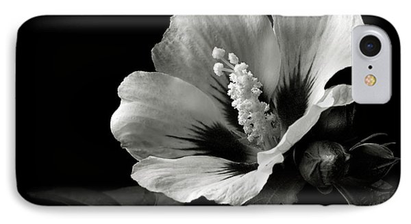 Rose Of Sharon In Black And White IPhone Case