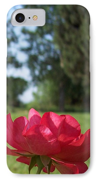 Rose Red IPhone Case by Rebecca Overton