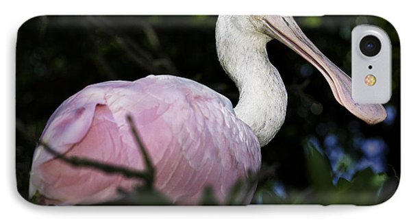 Roseate Spoonbill IPhone Case by Fran Gallogly