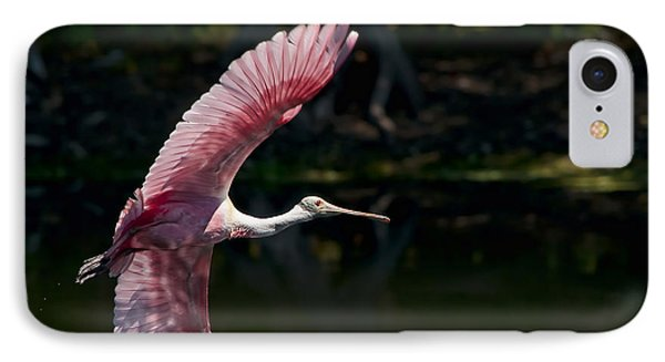 IPhone Case featuring the photograph Roseate Spoonbill by Steven Sparks