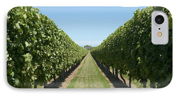 Row Of Grapevines In Vineyard Phone Case by Dave & Les Jacobs