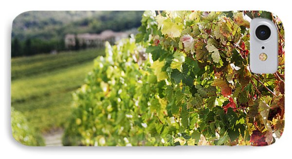 Row Of Grapevines In Vineyard Phone Case by Jeremy Woodhouse