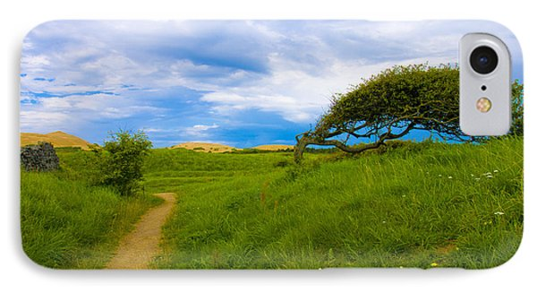 Rubjerg Path IPhone Case by Mike Santis