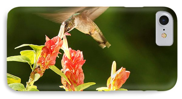 IPhone Case featuring the photograph Ruby Throat Hummingbird by Luana K Perez