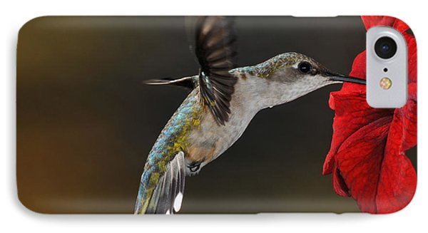 Ruby Throated Hummingbird IPhone Case by Mike Martin