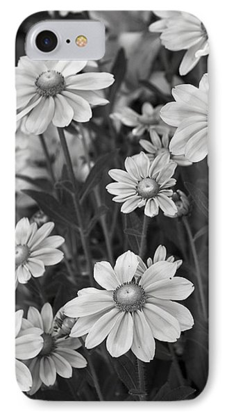 Rudbeckia Hirta IPhone Case