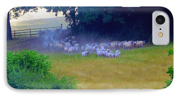 IPhone Case featuring the photograph Running Of The Sheep by Rdr Creative
