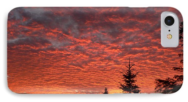 IPhone Case featuring the photograph Sailor's Delight by Laurel Best