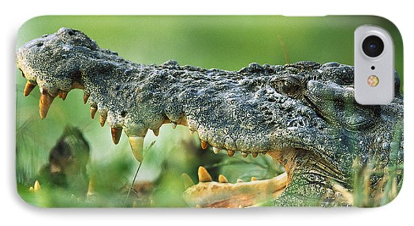 Saltwater Crocodile Crocodylus Porosus Phone Case by Cyril Ruoso