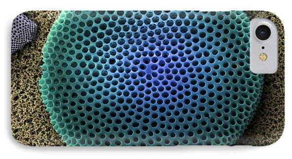 Saltwater Diatom IPhone Case by Ted Kinsman