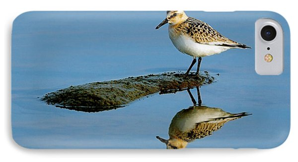 Sanderling Reflecting Phone Case by Tony Beck