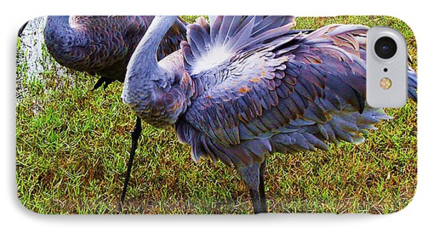 IPhone Case featuring the photograph Sandhill Cranes-plumes In Bloom by Joy Braverman