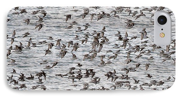 IPhone Case featuring the photograph Sandpipers In Flight by Dan Friend