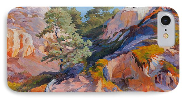 Sandstone Canyon At Torrey Pines IPhone Case