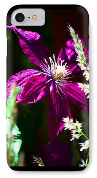 IPhone Case featuring the photograph Santa Fe Summer by Susanne Still