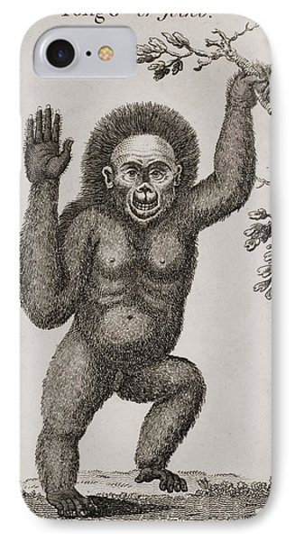 Satyrus, Ourang Outang. Pongo Or Jocko Phone Case by Ken Welsh
