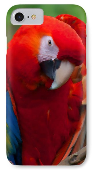 IPhone Case featuring the photograph Scarlet Macaw by Cindy Haggerty