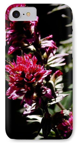 Scarlet Paintbrush IPhone Case