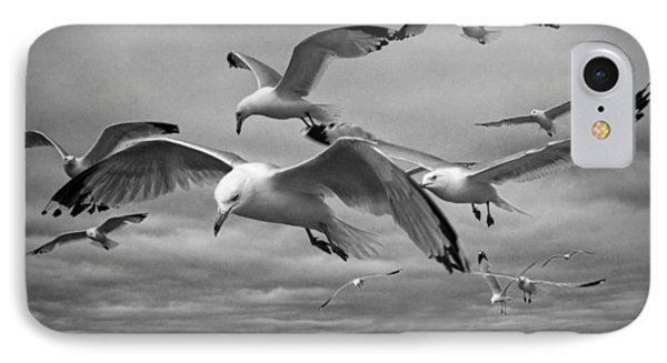 Sea Gull Scavengers IPhone Case by Randall Nyhof