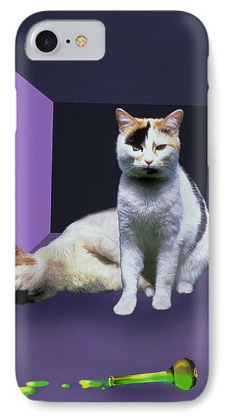 Schrodinger's Cat Experiment Phone Case by Mehau Kulyk