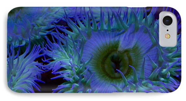 Sea Anemone IPhone Case