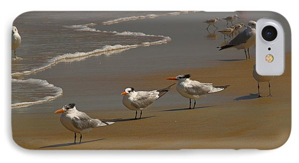 Sand And Sea Birds IPhone Case by Barbara Middleton
