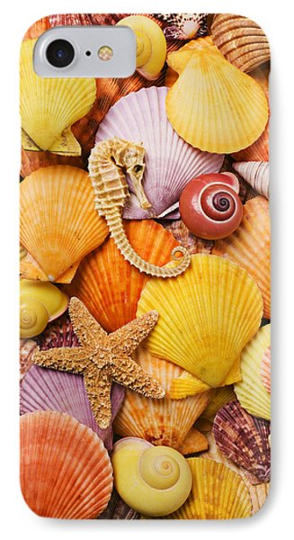 Sea Horse Starfish And Seashells  Phone Case by Garry Gay