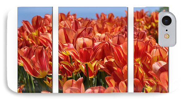 Sea Of Tulips IPhone Case by Elaine Manley