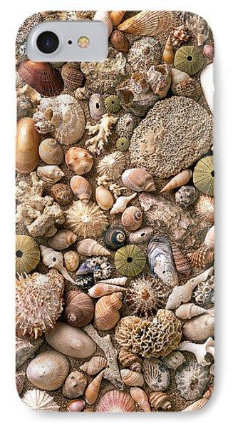 Sea Shells  Phone Case by Mauro Celotti