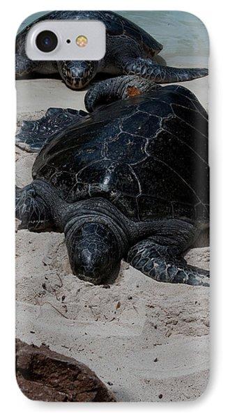 Sea Turtles IPhone Case by Karen Harrison