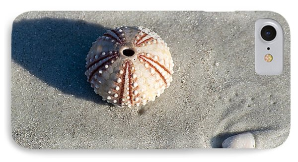 Sea Urchin And Shell Phone Case by Kenneth Albin