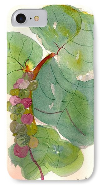 IPhone Case featuring the painting Seagrapes by Joy Braverman