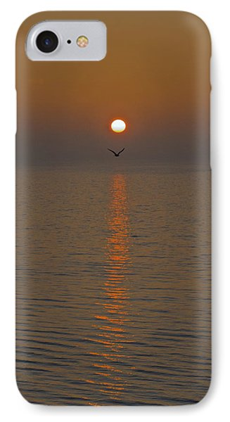 Seagull At First Light Phone Case by Gary Eason