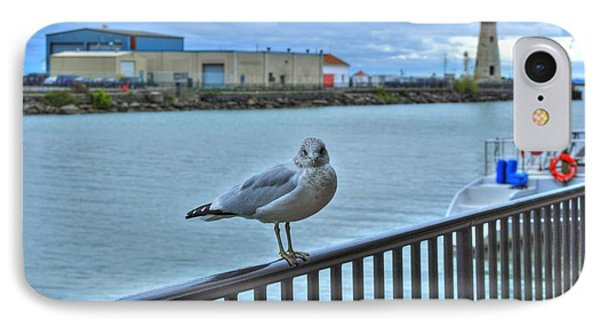 IPhone Case featuring the photograph Seagull At Lighthouse by Michael Frank Jr