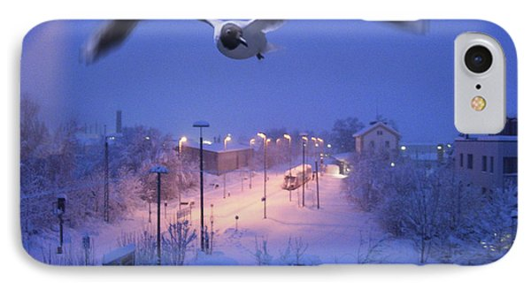 Seagull At Winter Phone Case by Nafets Nuarb