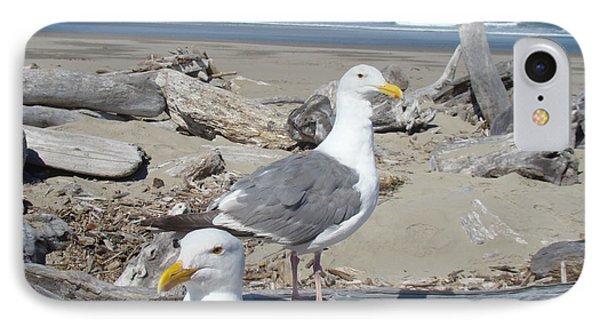 Seagull Bird Art Prints Coastal Beach Bandon Phone Case by Baslee Troutman