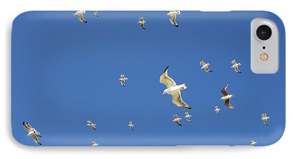 Seagull Phone Case by Johnny Greig