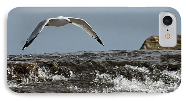 IPhone Case featuring the photograph Seagull Overt The Rapids by Darleen Stry