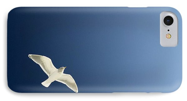 Seagull Soaring Phone Case by Con Tanasiuk