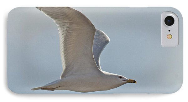 Seagull Soaring Phone Case by Darleen Stry