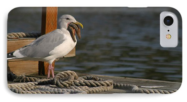 IPhone Case featuring the photograph Seagull Swallows Starfish by Kym Backland