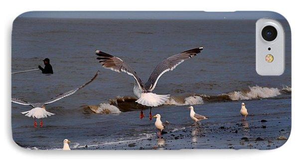 Seagulls Dip Netting  Phone Case by Debra  Miller