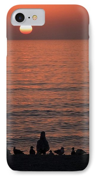 Seagulls Watching Sunset IPhone Case