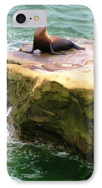 IPhone Case featuring the photograph Seal Rock by Sue Halstenberg