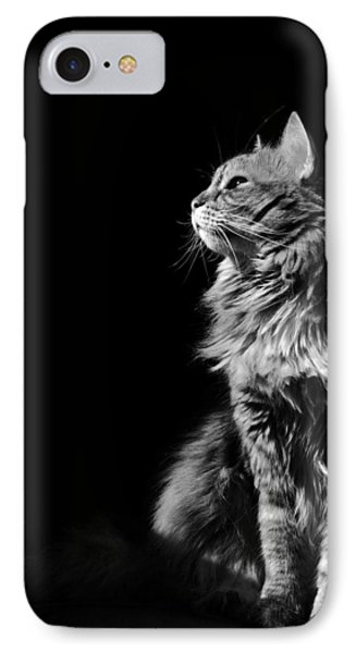 IPhone Case featuring the photograph Searching The Sun by Raffaella Lunelli