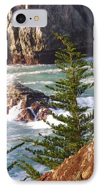 Secluded Big Sur Cove 2 Phone Case by Jeff Lowe