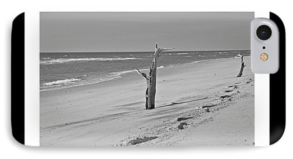 Shackleford Banks Ancient Forest  IPhone Case