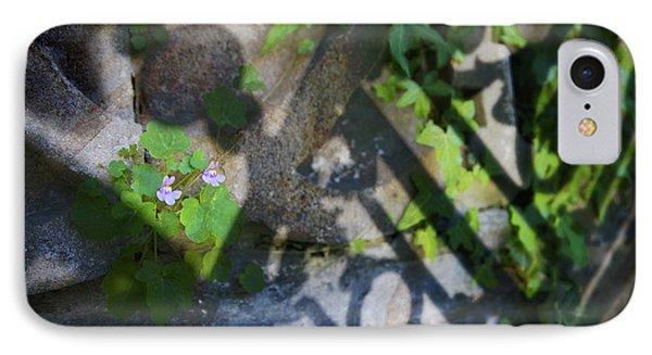 IPhone Case featuring the photograph Shadow Garden by Richard Piper