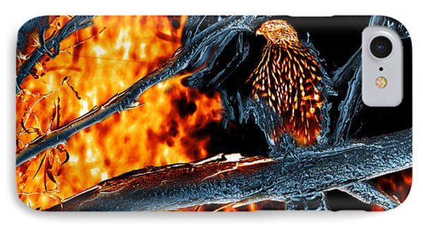 Sharp Shinned Hawk 0112 Fire And Ice Art IPhone Case by James Ahn