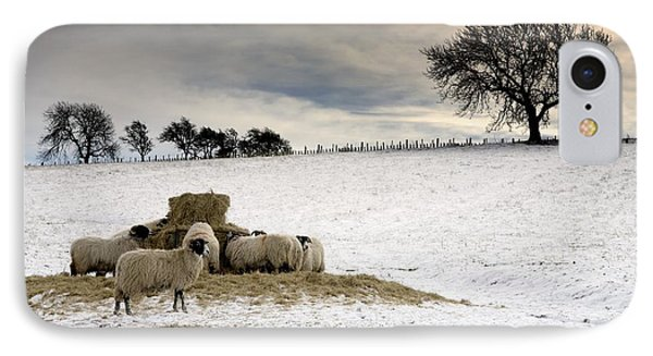Sheep In Field Of Snow, Northumberland Phone Case by John Short